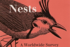 Helpers_at_birds_nest