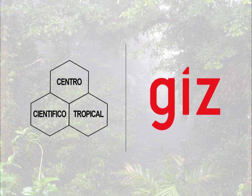 gizCUADRO